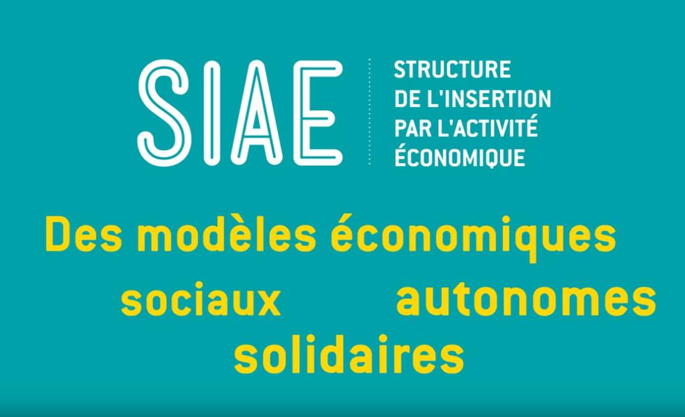 Découvrez la SIAE en vidéo, Structure de l''insertion par l''activité économique 0